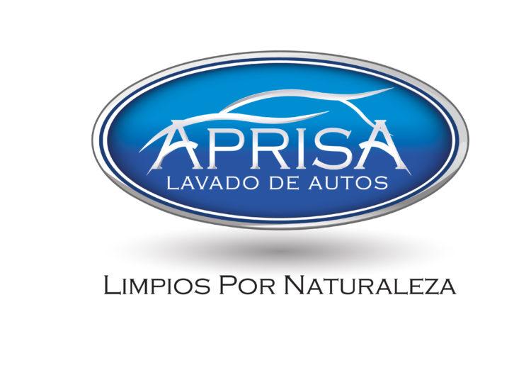 Servicio de spa para autos